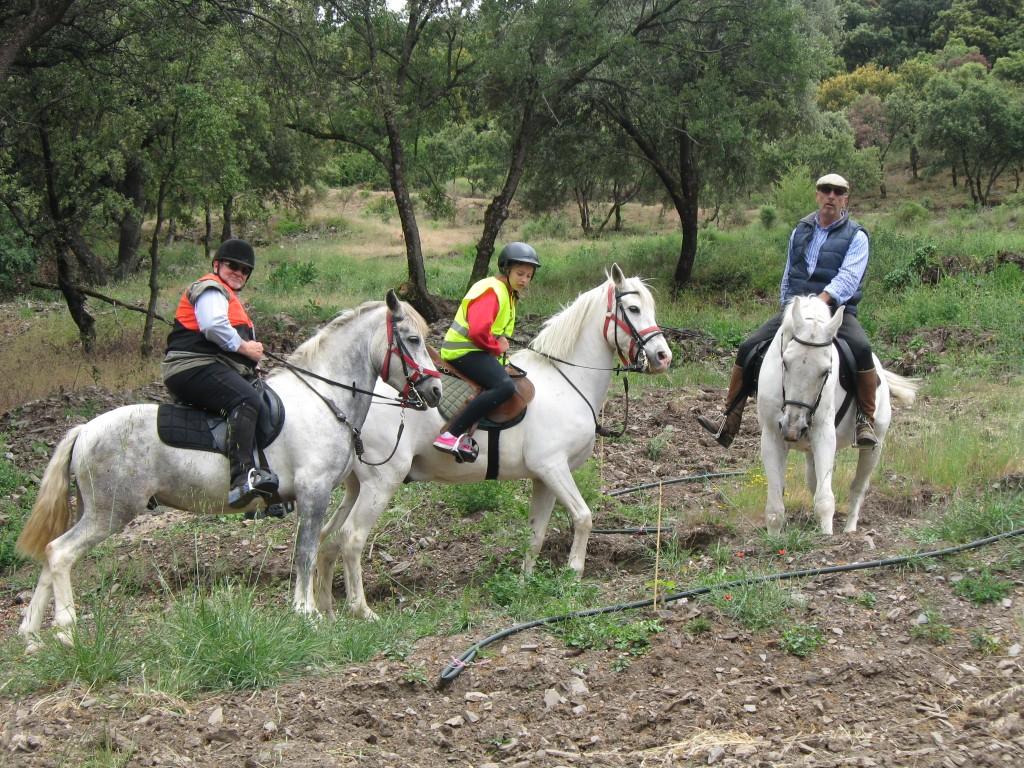 Sierra nevada horse riding