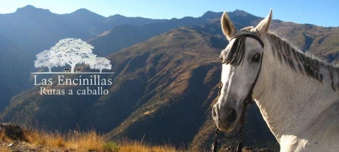 Paseo nocturno a caballo por Loma de los Papeles