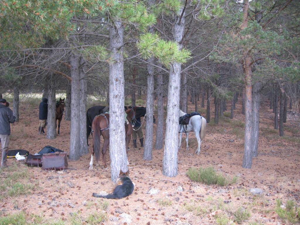 Trevélez a caballo