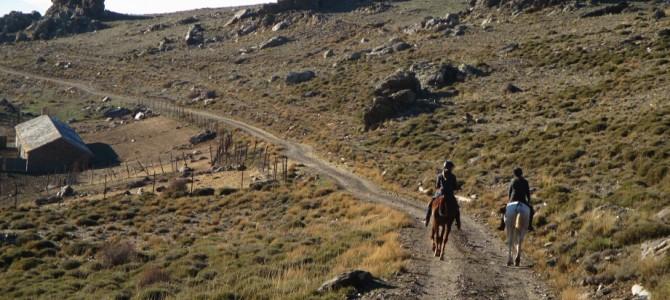 Un día a caballo por Sierra Nevada. Puente de la Constitución
