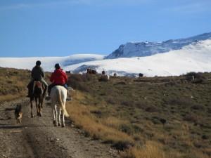sierra nevada a caballo