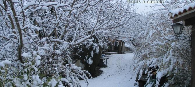 Nieve, caballos y más nieve… Alrededor del 20 de Enero del 2015
